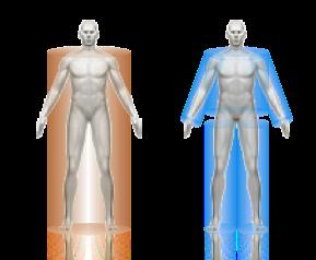 mobile body fat testing in colorado