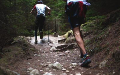 Nutrition and Training at High Altitudes