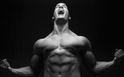 The PHAT Workout: Build Mass & Strength