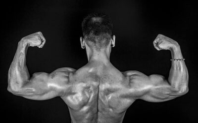 4 Day Split Workout Routine for Muscle & Strength